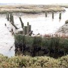 Sluice outfall at Falkenham saltmarsh