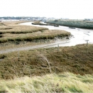 Falkenham saltmarsh looking towards Felixstowe Ferry
