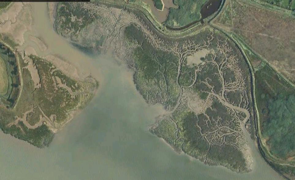 Levington Creek Site Satellite View