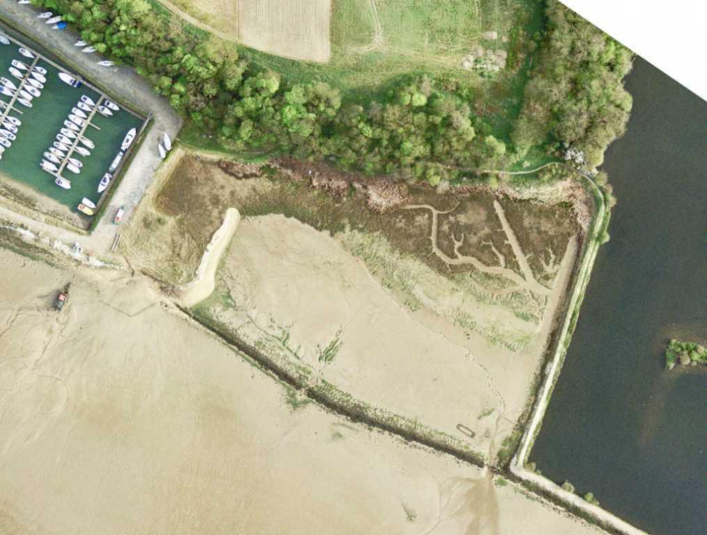 Loompit Lake Site