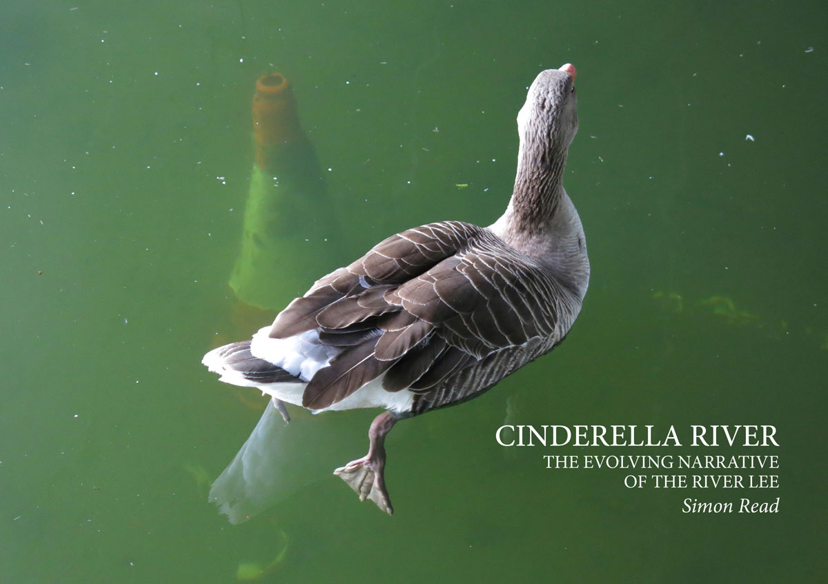 Click to buy your copy of Cinderella River by Simon Read